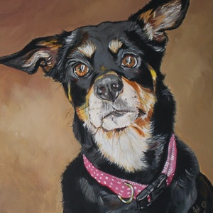 (CreativeWork) Jeda - the Kelpie by Julie Hollis. arcylic-painting. Shop online at Bluethumb.